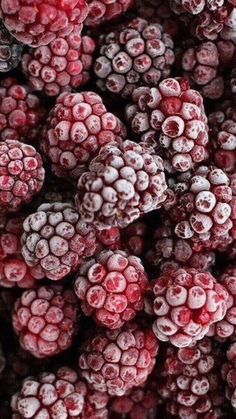 Take advantage of summer berry season and freeze Raspberries, Blueberries… Fruit And Veg, Fruits And Veggies, Image Fruit, Fruit Photography, Texture Photography, Food Wallpaper, Wallpaper Ideas, Iphone Wallpaper, Cranberries