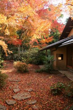 Fall Leaves at Misojien, Unzen City Shimabara Peninsula (Unzen City, Shimabara City, Obama Town & Minami-Shimabara City) Nature – mountains / Old buildings and streets