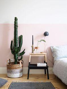Panier en osier avec cactus dans la chambre