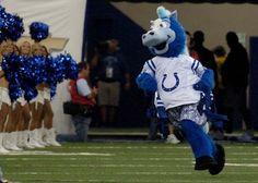 Blue - Indianapolis Colts' mascot