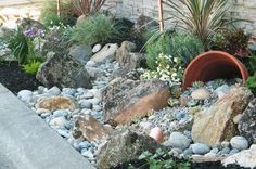 Low water landscape with gray rocks next to a sidewalk