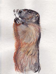 Murmeltier mit Blume, Marmot, Watercolor