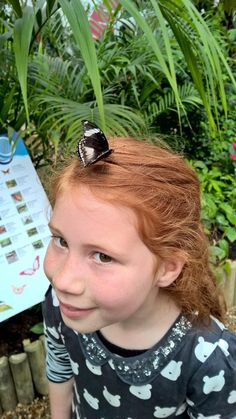 """Laura on Twitter: """"We loved the #Sensationalbutterflies @NHM_London and fast-tracked straight into the museum with our tickets  http://t.co/sXq8H5Zqkt"""""""