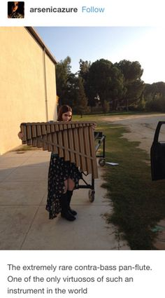 This very large pan flute.