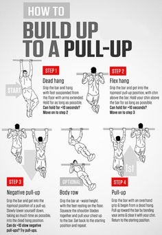 Pull Up Progression Exercise Guide