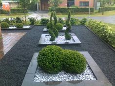 Create a rectangular plant bed in the front garden with an edge. Fill with slate chipping and architectural plants