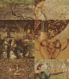 The Elder Scrolls Races– The Bosmer of Valenwood