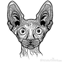 https://thumbs.dreamstime.com/x/vector-illustration-cat-head-animal-t-shirt-sketch-tattoo-sphinx-design-33799255.jpg