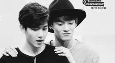 They're so cute <3 ChenBaek <3 ~ #Chen #Baekhyun #Exo (GIF)