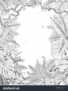 Hand drawn branches and leaves of tropical plants. Monochrome rectangle vertical l floral frame. Monstera, ficus, fern, liana, palm fronds sketch. Black and white illustration coloring page for adult.