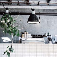plants, black lights, grey walls coffee shop via @vainnglory on Instagram http://ift.tt/1eLxNYK