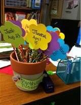 Birthday blooms flower pot... The pot starts full at the beginning of the year and on each student's birthday, they receive their birthday pencil and maybe candy?