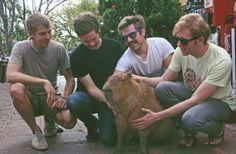 Capybara getting love from Capybara Capybara, Friends Forever, Guinea Pigs, Viral Videos, Trending Memes, Funny Jokes, Indie, Couple Photos, Pets