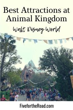 Best Rides at Animal Kingdom You Don't Want to Miss | Disney Plannining | List of Attractions at Animal Kingdom Disney World Parks, Walt Disney World Vacations, Disney Trips, Get Away Today, Discovery Island, Wilderness Explorer, Animal Experiences, Star Tours, Disney World Tips And Tricks