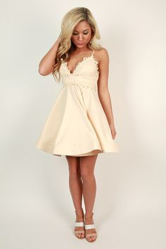 Delicate Details Lace Fit & Flare Dress in Champagne