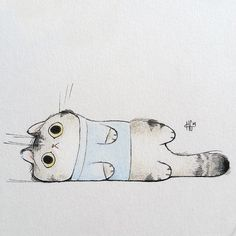 heathersketcheroos:  Fall season calls for cats in sweaters...