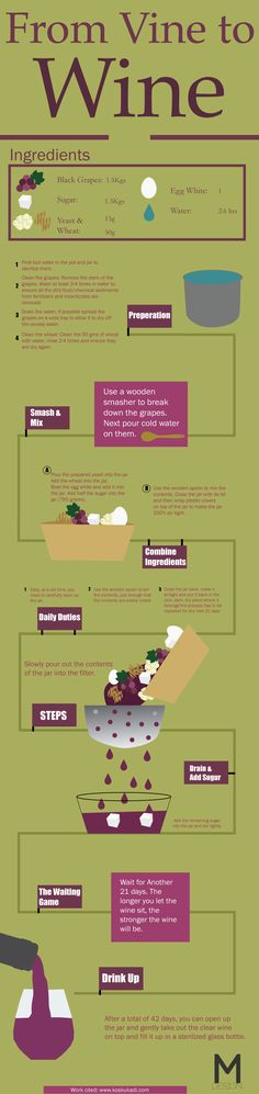This is an infographic of the process from grape to wine. It tells the viewer step by step how to make wine.