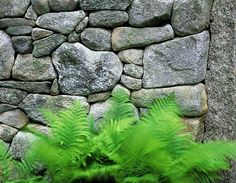 Dry Stone Walls Constructed without mortar or cement. The art of the waller.