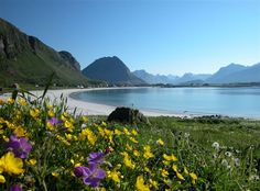 Ramberg beach in Lofoten island, Norway… Beautiful Norway, What A Beautiful World, Beautiful Places, Lofoten, Nature Images, Nature Pictures, Norway Beach, Places To Travel, Places To Go