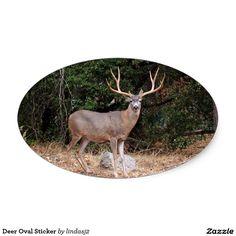Deer Oval Sticker