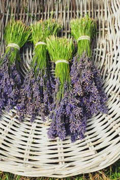 Use lavender to scent drawers and closets and to repel insects or mix a late summer drink with lavender flowers.