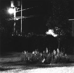 Robert Adams Longmont, Colorado, 1978 Dark Summer, Summer Dream, Robert Adams Photography, Monochrome Photography, Summer Nights, Night Time, Longmont Colorado, Landscape Photography, Cool Photos