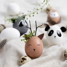 Ostereier als Wildtiere bemalen – Waschbär, Reh, Eule oder Panda – Ostern wird … Paint Easter eggs as wild animals – raccoon, deer, owl or panda – Easter is celebrated without rabbits and lamb! Easter Egg Crafts, Easter Bunny, Easter Eggs, Easter Dyi, Easter Gift, Diy Y Manualidades, Easter Egg Designs, Egg Decorating, Peter Rabbit
