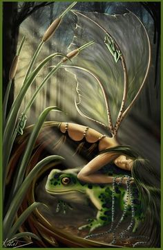 ..frog fairy