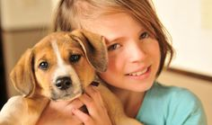 The Monhagen Veterinary Hospital provide wide range of veterinary speciality services.
