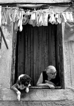 Dog and old lady in a Window. laundry, culture, glasses, hands, paws, fingers, watching, alert, curious, photo b/w.