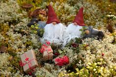 There are lots of different elves in Finnish mythology. Home elf takes care of the house, and he has to be treated with respect. The sauna elf lives in the sauna and protects it. Nowadays, the most well-known elves are Christmas elves.