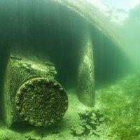 Zürichsee / Tauchen im Süsswasser / Galerie | Nies.ch Lake Zurich, Fresh Water, Diving, Northern Lights, Nature, Naturaleza, Scuba Diving, Aurora Borealis, Nordic Lights