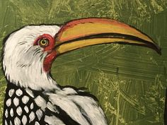 Southern Yellow-billed Hornbill 2019 #PieterCronjeArt #Hornbill #AfricanBirds