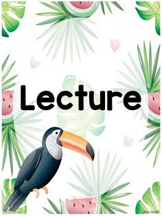 Ensemble complet - Décor tropical BUNDLE by Annie Barrette Kids Book Club, Tropical, Math, Barrette, Annie, Elsa, Cactus, Coconut, Architecture
