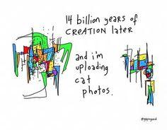 14 billion years later and I'm uploading cat photos.