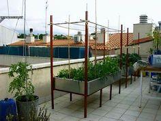 El Huerto en Mesas de Cultivo #gardening