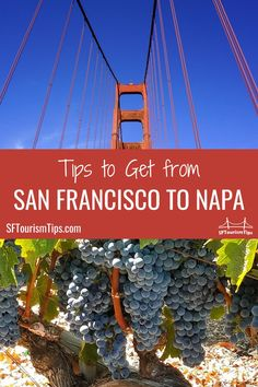 You can drive, take a guided tour, or take public transit to get from San Francisco to Napa. My guide will help you select the best option with tips to make the most of your journey for each one. #napavalley #sanfranciscotravel #northerncaliforniawinecountry #sftourismtips San Francisco Vacation, San Francisco Travel, Best Wineries In Napa, Northern California Travel, Napa Valley Wine Train, Sonoma Raceway, Day Tours, Wine Country, Tour Guide