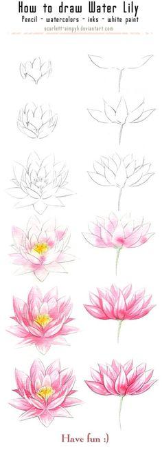131 - Cómo dibujar y pintar Waterlily ~ Comment dessiner et peindre une fleur