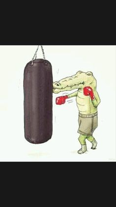 Life Pictures, Cool Pictures, Funny Pictures, Illustration Crocodile, Life Of Crocodile, Funny Cartoons, Funny Comics, Funny Humor, Funny Illustration