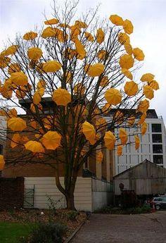 Umbrella art installation.