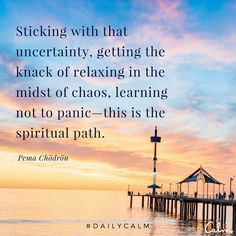 Sticking with that uncertainty, getting the knack of relaxing in the midst of chaos, learning not to panic - this is the spiritual path. Spiritual Path, Spiritual Wisdom, Spiritual Growth, Spiritual Awakening, Spiritual Meditation, Meditation Quotes, Spiritual Gangster, Mindfulness Meditation, Guided Meditation