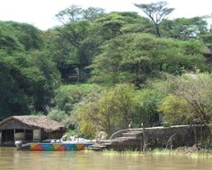 Island Camp, recently renovated in early 2013, is situated on an enchanted, remote island - Ol Kokwa - in Lake Baringo. It is informal, relaxing, and surrounded by spectacular scenery, a perfect retreat for weekends, private parties and conventions. Accommodation is in 17 ensuite lake view rooms; 6 standard, 7 deluxe and 4 superior with private splash pool, tucked away under the shade of spreading acacias and separated by green lawns and natural rockeries.
