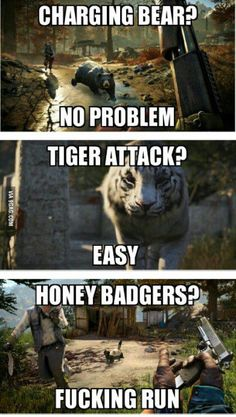 hahahaha this is so true in real life. Been charged by elephant bulls and pissed off lions but the honey badger nearly made me crap my pants!