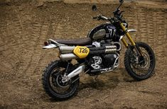 2019 Triumph Scrambler 1200 Returns Factory to Baja 1000 - BikesRepublic Triumph Scrambler, Triumph Bonneville, Triumph 1200, Scrambler Motorcycle, Travis Pastrana, Desert Sled, Bike Shed, Triumph Motorcycles, Standard Motorcycles
