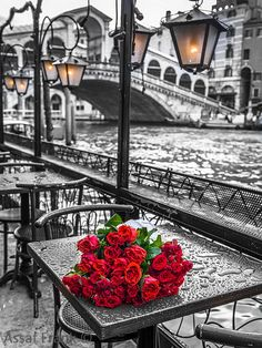 Venice   Photography By Assaf Frank   Camberley, Surrey, United Kingdom