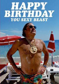 Sarcastic Birthday, Happy Birthday Funny, Funny Happy, Funny Birthday Cards, Special Birthday, Happy Birthday Wishes, Funny Rude, Birthday Images, Birthday Quotes