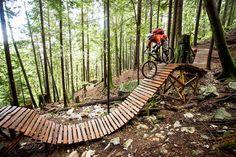 Roller Coaster boards - Biking. Find local biking trails at [EducatorHub.com]