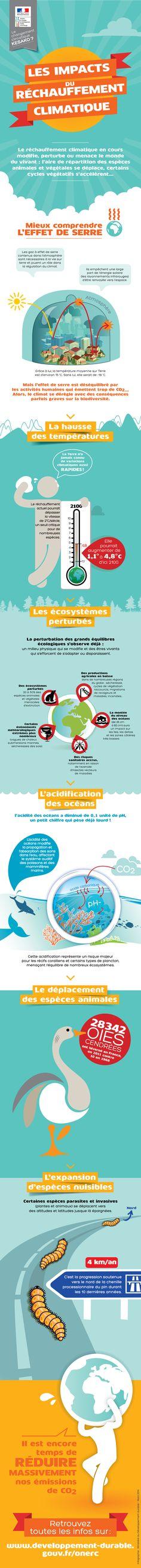 Infographie : Les impacts du Réchauffement climatique : Ministère du Développement Durable #climate #impact #environment