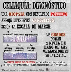 Diagnóstico de Celiaquía: Grados Marsh