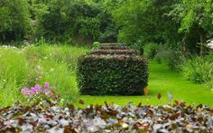 """Arne Maynard: """"We planted a grid of copper beech cubes that give a bold structure to the open space, and contrasted that with the soft planting of herbaceous grasses and flowers in square beds to the sides."""""""